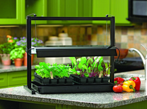 Energy efficient, long lasting and high intensity grow lights promote the greatest yields when growing tomatoes, peppers, eggplant and other fruiting plants indoors. (Photo courtesy of Gardener's Supply)