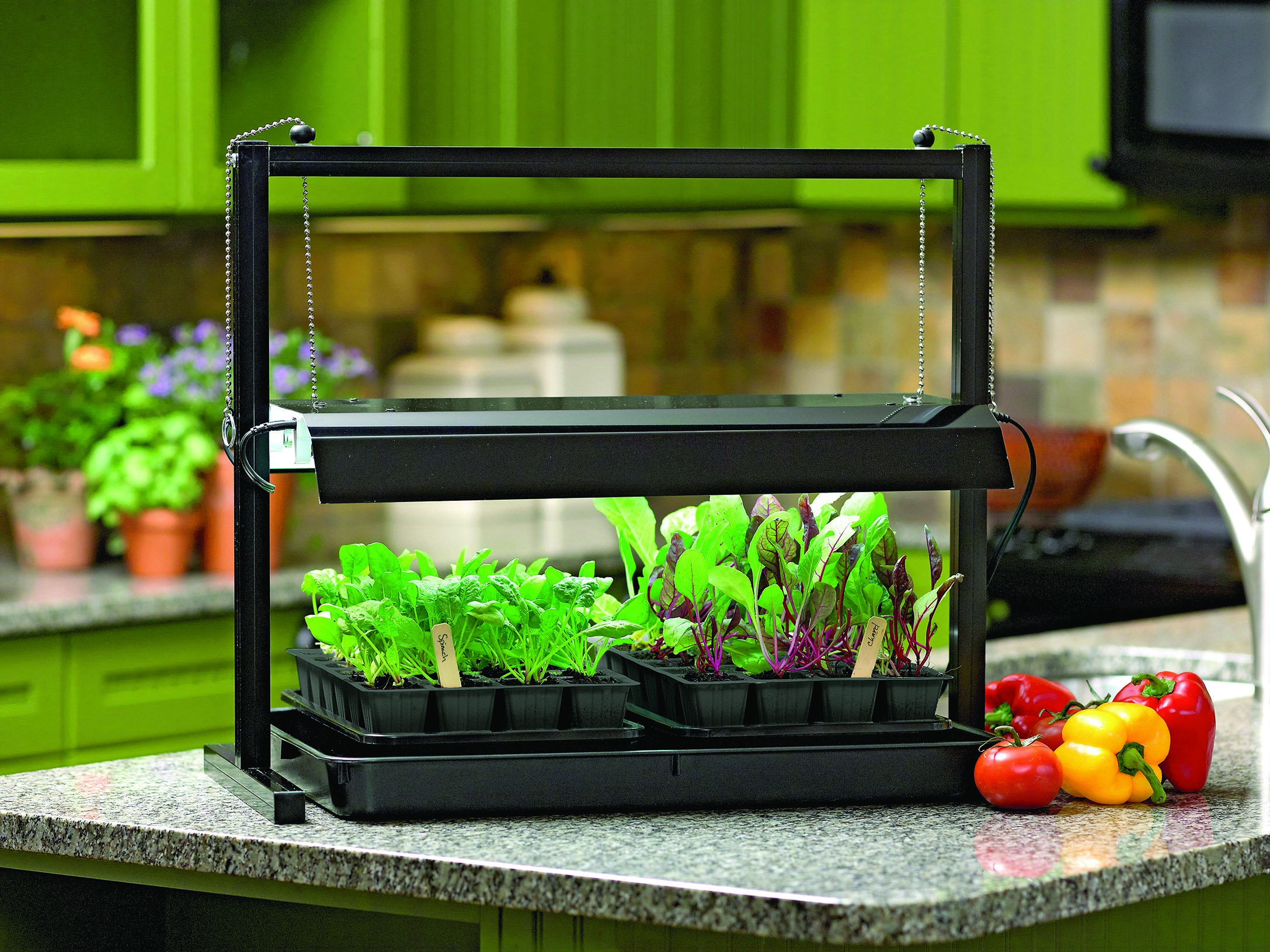 Energy Efficient, Long Lasting And High Intensity Grow Lights Promote The  Greatest Yields When Growing